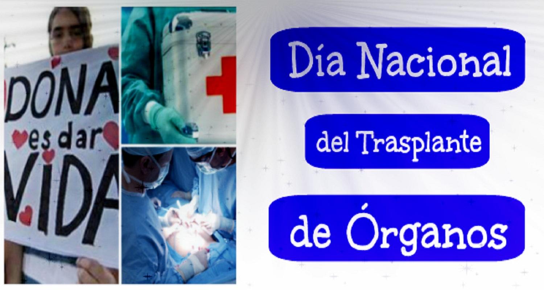 """22-11: """"Día nacional del trasplante de órganos"""""""