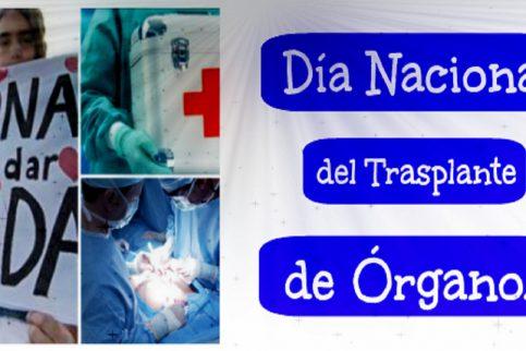 "Thumbnail - 22-11: ""Día nacional del trasplante de órganos"""